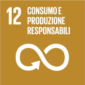Goals 12 Consumo e produzione responsabili
